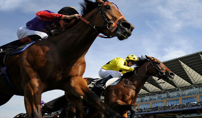 Preakness Stakes Betting odds and predictions