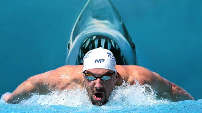 Michael Phelps vs. Great White Shark Updated Odds