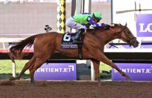 Good Magic Horse Betting Picks 2 for 2018 Kentucky Derby