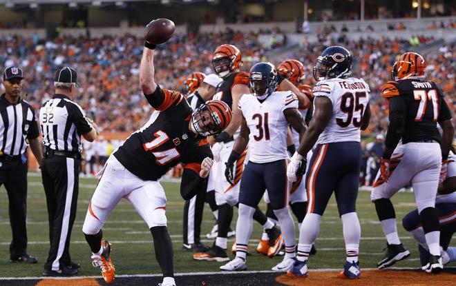 Chicago Bears vs. Cincinnati Bengals NFL Betting Odds, Expert Predictions and Information