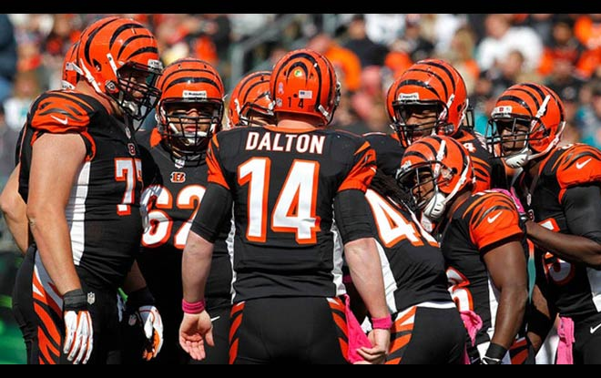 Cincinnati Bengals Betting odds, schedule and expert predictions