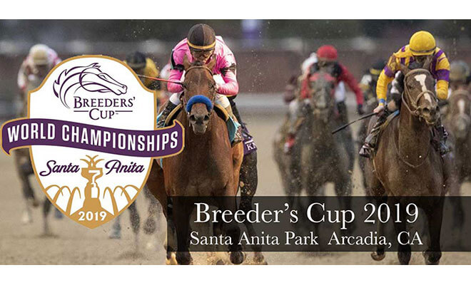 2019 Breeders' Cup Classic Horse Racing Betting Odds and Best Horses to Bet