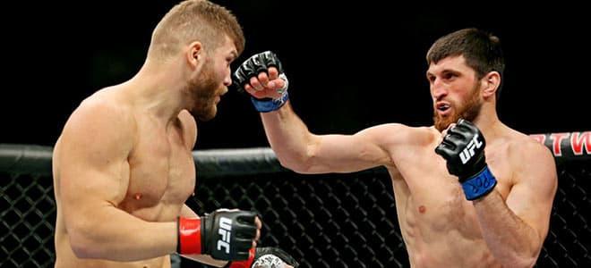 Magomed Ankalaev vs. Ion Cuțelaba UFC Betting 252 Odds and Picks